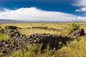 Kealakomowaena area.  (Photo courtesy of  Hawai'i Volcanoes National Park.)