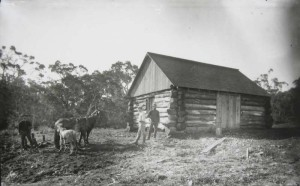 Log Cabin at Keanakolu