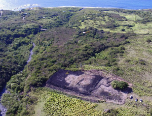Aerial view of Lo'alo'a heiau, associated with Maui king Kekaulike.  Photo credit:  David Waynar.