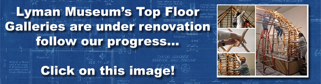 home_slider_renovation_small